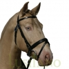 Combined-English-bridle-2w