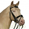 Combined-English-bridle-BD-1w