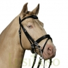 Combined-English-bridle-BD-3w