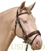 English-Portuguese-bridle-B-2w