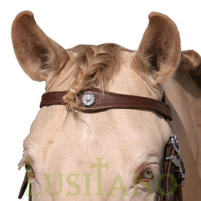 English-Portuguese-bridle-B-4w