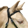 Leather-noseband-cavesson-3w