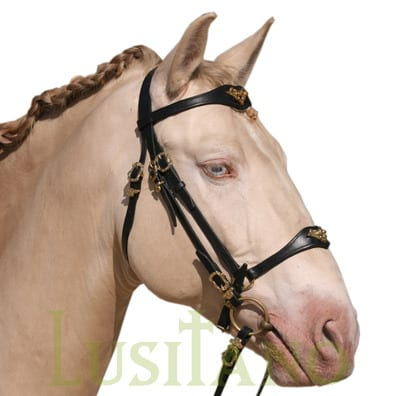 Portuguese-German-bridle-1w