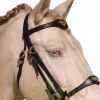 Portuguese-German-bridle-3w