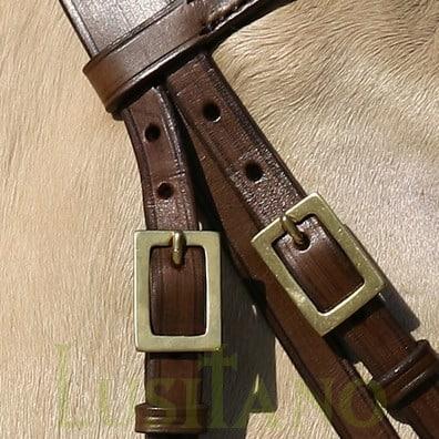 Portuguese-bridle-D-4w