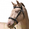 Traditional-Baroque-bridle-2w