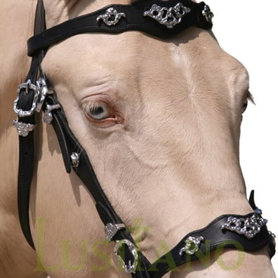 Traditional-Baroque-bridle-3w