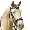 Traditional-Baroque-bridle-D-1w