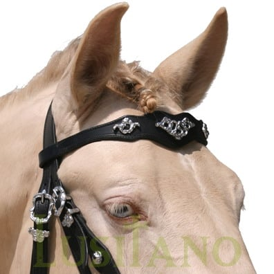 Traditional-Baroque-bridle-D-3w
