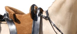 Portuguese horse tack