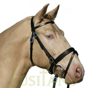 Combined Portuguese-English bridle