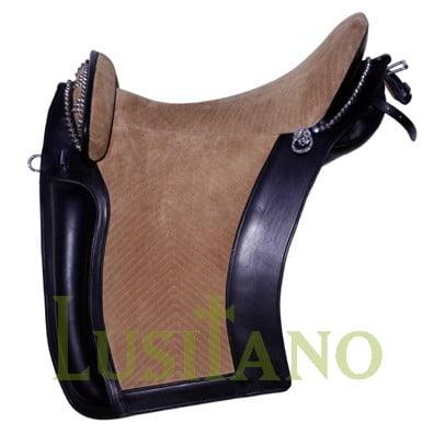 D. Dinis saddle