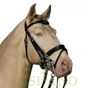 Combined Portuguese-English bridle BD