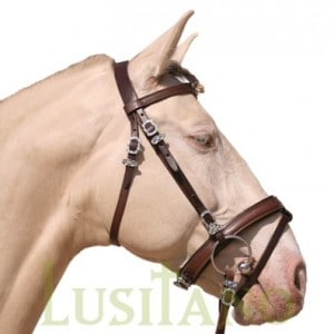 Combined Portuguese-English bridle B
