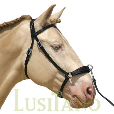 Leather noseband cavesson