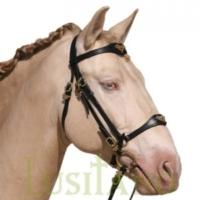 Horse bridles