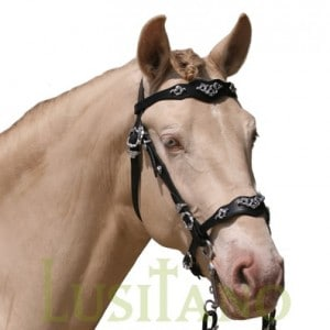 Traditional Baroque bridle