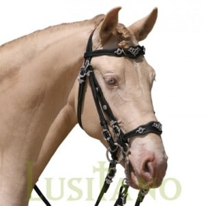Traditional Baroque bridle WHS-D